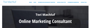 online marketing guy -tsvik.com