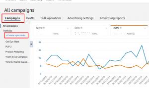 Amazon Campaign Management